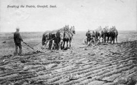 Breaking the Prairie